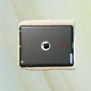 Bag- iPad