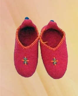 Center embroidery shoes