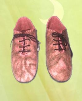 Felt Shoe with lace